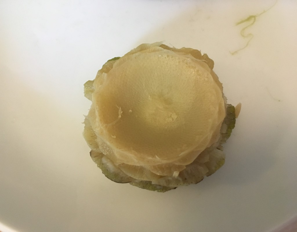 steamed artichoke heart